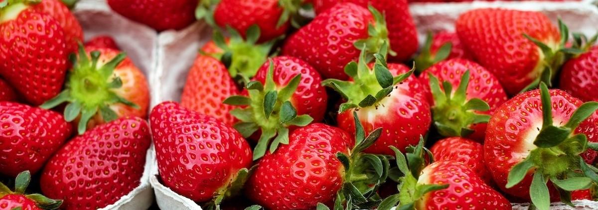 boer-coesfeld-leckere-rezepte-erdbeeren