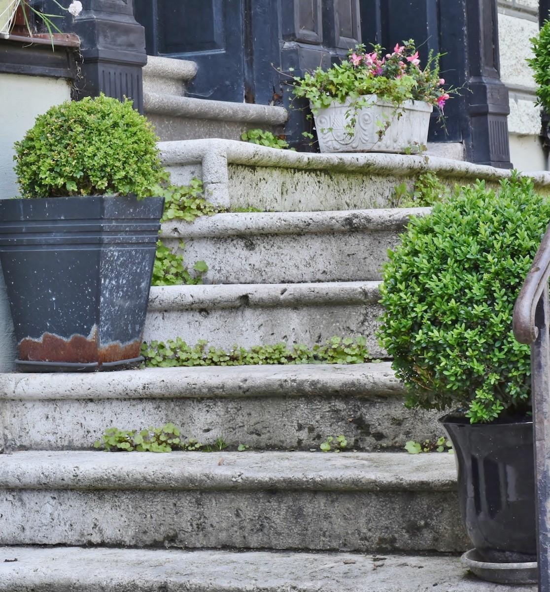 pflegetipps-stein-treppe