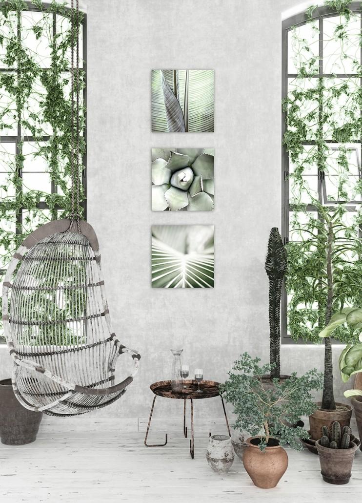boer-boutique-deko-greenery-pflanzen-wandbilder