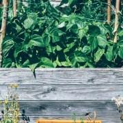 hochbeet-bauen-tipps-moebel-boer-blog